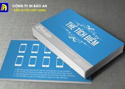 Dịch Vụ In Túi Giấy, Túi Nilon, Thẻ Giảm Giá Tại Hà Nội. In theo yêu cầu giá rẻ, xưởng in tại Hà Nội